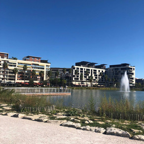 Bassin Jacques Coeur - Montpellier