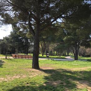 Parc Montcalm – Montpellier