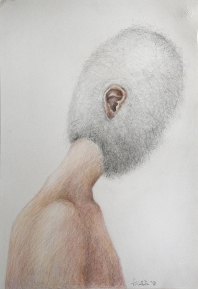 cocoon ear - 35X50 - color pencils on paper - 2018