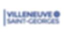 logo VSG.png