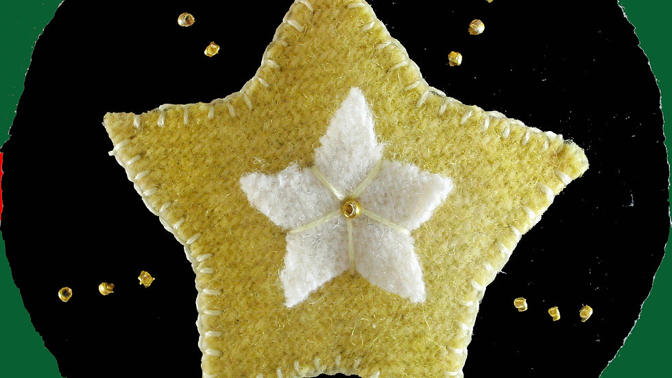 Star Ornament Kit with Pattern