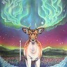 A deer with northern lights for antlers