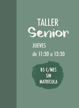 Taller Senior Manualidades