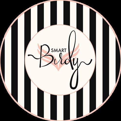 Birdy Smart Logo Blush.png