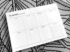 -Planner Semanal Net 11.JPG