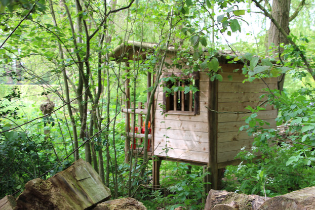 Cabane dans le bois