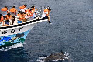 圖7 船中接待將成為海岸創生的基石1(多羅滿賞鯨提供).JPG
