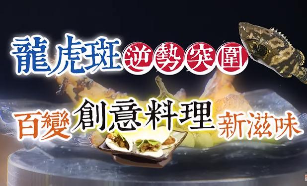 【進擊的台灣】尚青龍虎斑+逆境翻轉人生.png
