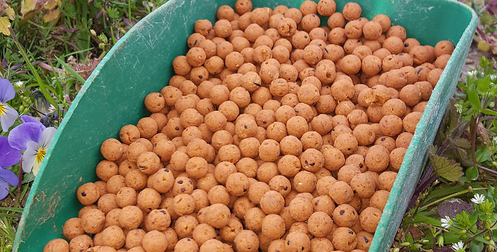 Feed Boilies - Winter