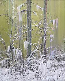 Kantanen_Untitled_Forest 7.jpeg