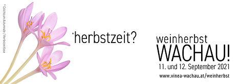Wachauer Weinherbst_v4.jpg