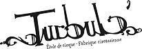 logo turbul.png
