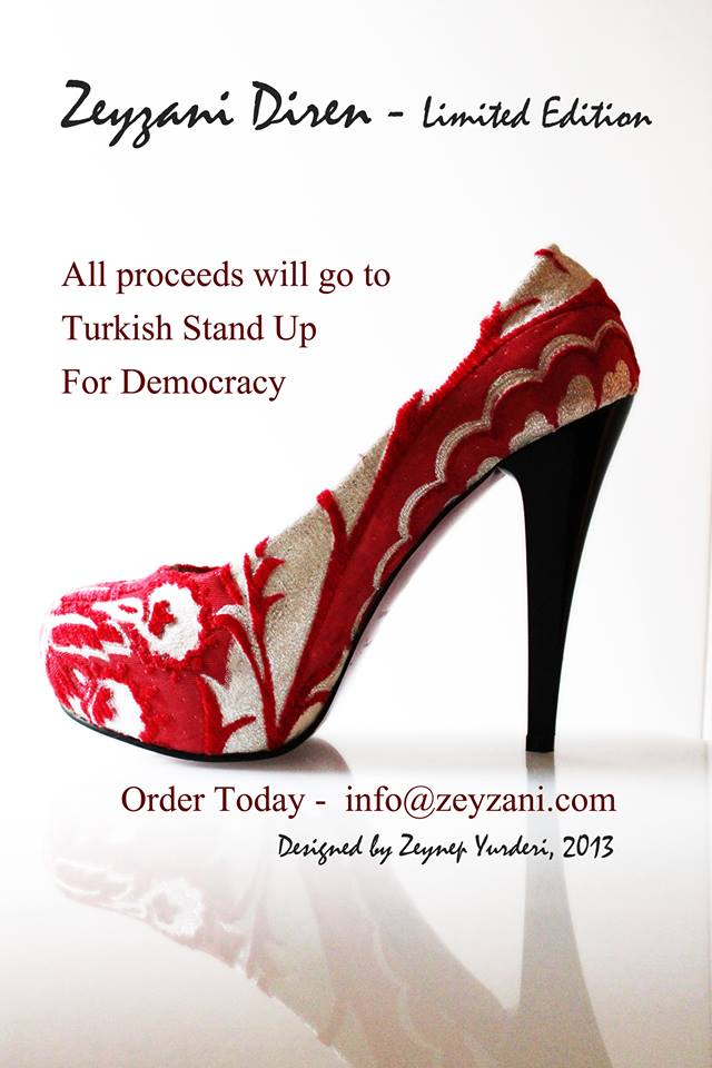 "Zeyzani for ""Stand Up for Democracy"""