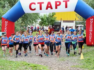 В Северном Тушино состоялись  финальные городские соревнования по кроссу Московской межокружной Спар