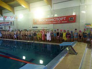 """В бассейне ФОК """"Лазурный"""" пройдет первенство по плаванию"""