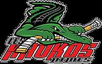 logo-krokos-crocodile.png