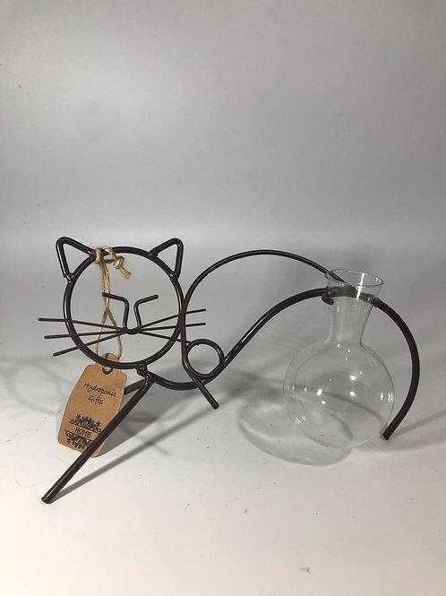 Hydroponic Cat