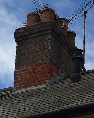 chimney cap bird guard