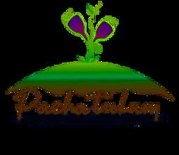 Logo Pacha Tulum Maya playa hotel b&b