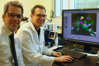 Canadian Light Source illuminates E. coli pathogenesis