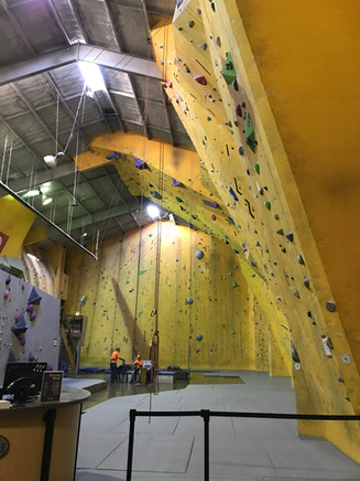 Coombes lab - Reaching for the top