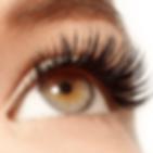 eyelash.webp
