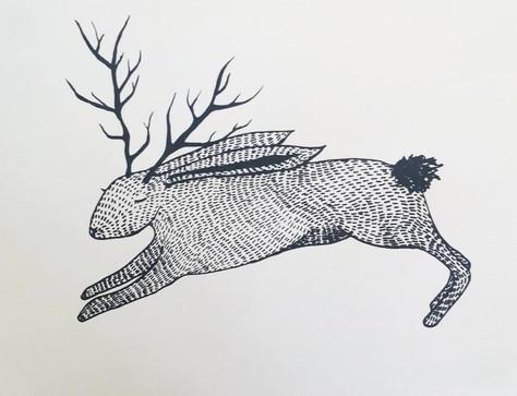 jackelope