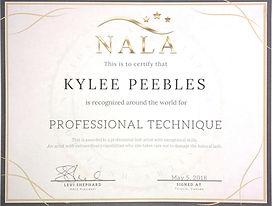 Professional Technique Award.jpg
