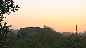Wheldrake2.jpg