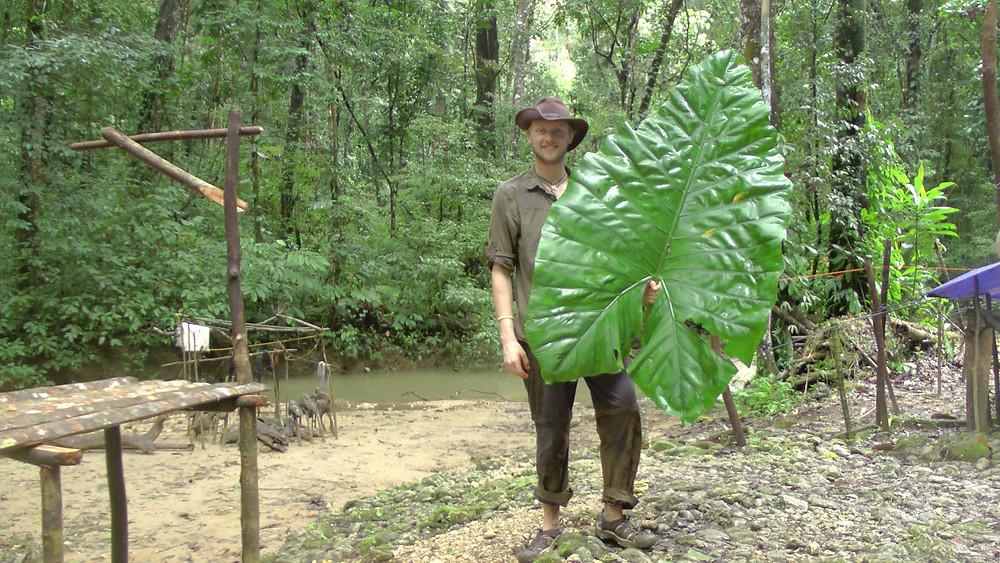 Me and a big leaf.