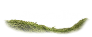 TTOTT official logo black.png
