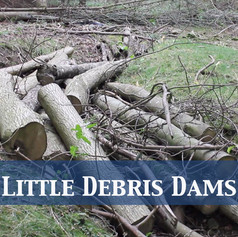 Little Debris Dams
