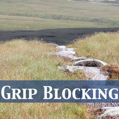Grip Blocking