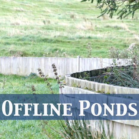 Offline Ponds