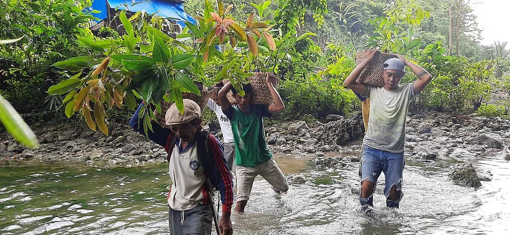 A team of tree-planters in Lambusango (the reserve next to La Bundo Bundo)