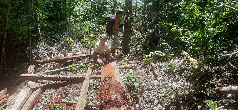 Finding areas of illegally-logged reserve to reforest.