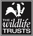 WT_Logo_2011.jpg