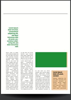 Pagina di giornale.png