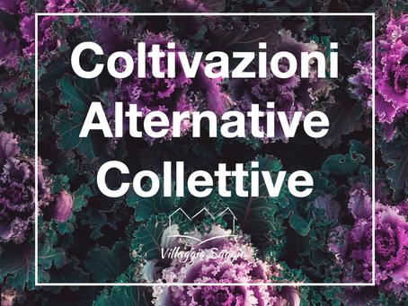 Coltivazioni Alternative Collettive