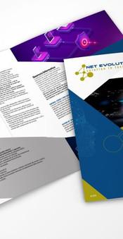 Company profile NetEvolutions