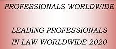 professionalworldwidelogo.png