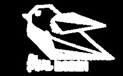 PNG Blue ROBIN