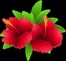 vermelhas-flores.png