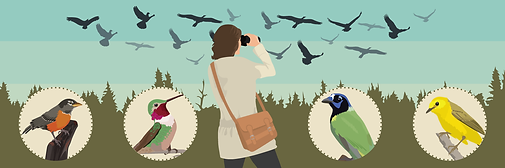 birding-migration-locations-header.png