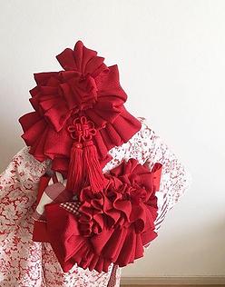 紅緋髪飾り.PNG