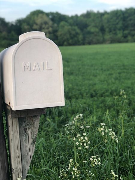 WE GROW Newsletter bestellen! Versäume keinen Community Event mehr - trage dich in den Newsletter-Verteiler ein und erhalte alle Infos.