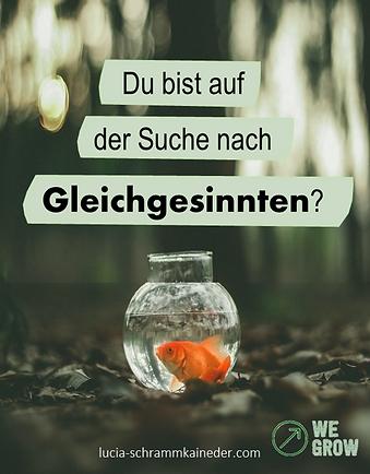 Suche-nach-Gleichgesinnten_WE-GROW.png
