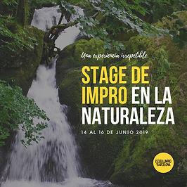 stage 2019 (1).jpg