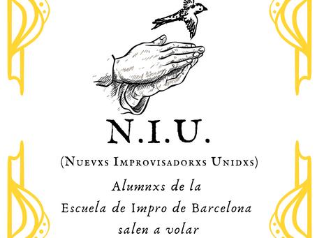 Nace el proyecto N.I.U