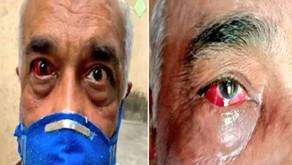 Ex-Navy officer beaten for forwarding cartoon on CM Uddhav
